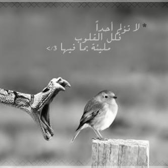 مَلــيئئةة \'(